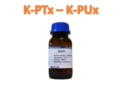 KLOÉ: K-PX